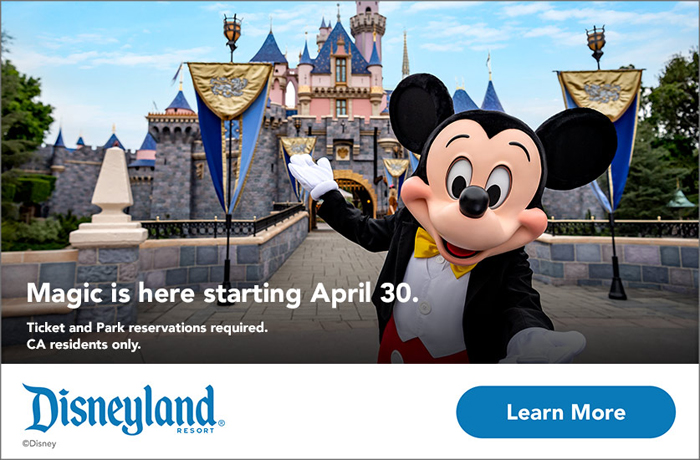 Disneyland banner with a learn more button