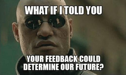 feedback determine future