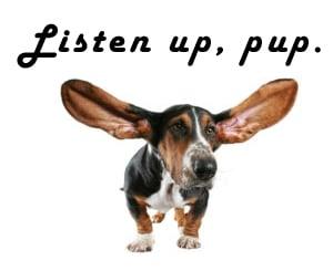 listen up pup 2jpg