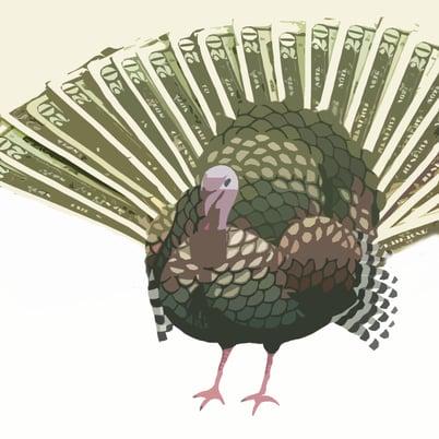 turkey money